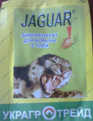 Как применять препарат ягуар от тли?