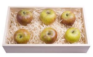 Как продлить срок хранения яблок?