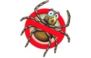 Средства борьбы с паутинным клещом