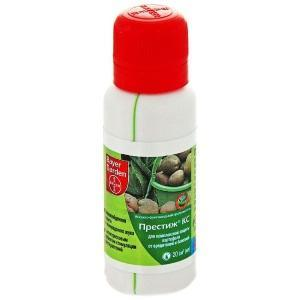 Средство от жука-щелкуна