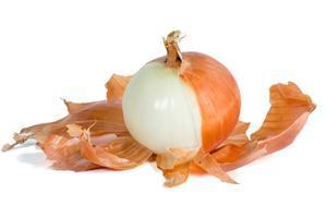 Луковая шелуха от тли: как приготовить раствор?