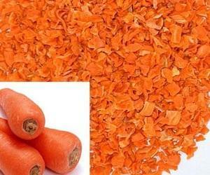 Польза и вред сушеной моркови