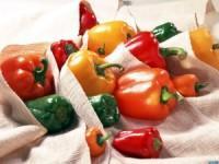 Хранение болгарского перца на зиму