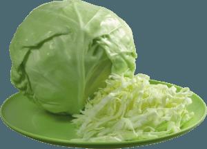 Хранение капусты белокочанной