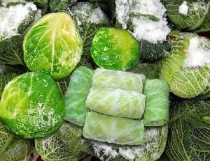 Сбережение капусты дома или в погребе