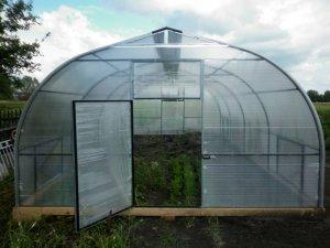 Как выбрать теплицу для выращивания клубники?