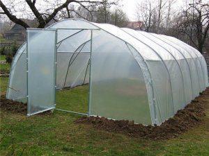 Пленочные теплицы для выращивания рассады