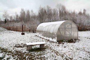 Как выращивать овощи в теплице зимой?