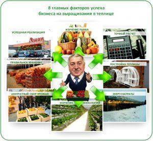 Бизнес план по выращиванию овощей в теплице