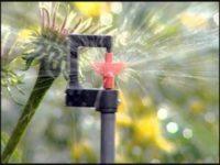 Капельный полив для теплицы