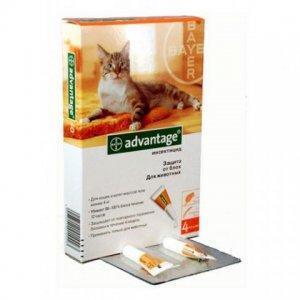 инструкция по применению адвантейдж для кошек - фото 4