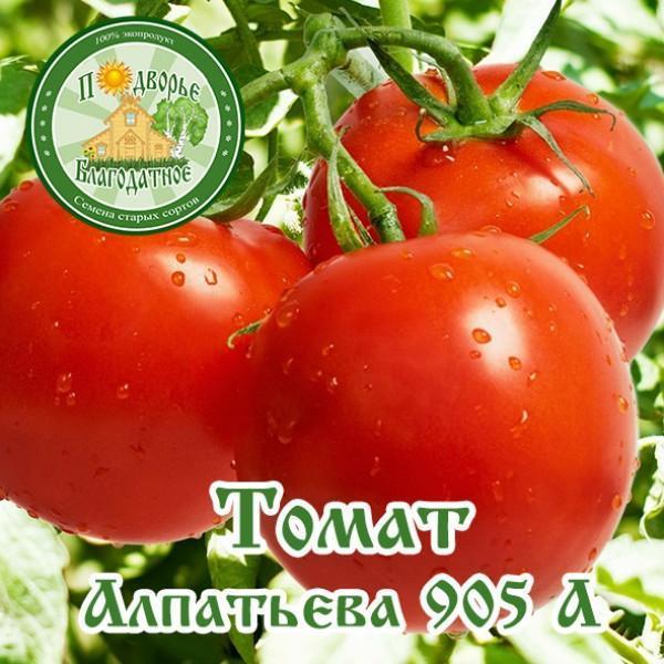 томат женское счастье