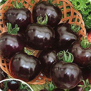 """Томат """"Черная гроздь"""""""