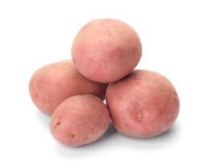 Сорт картофеля Беллароза: описание