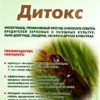 Дитокс от картофельной моли