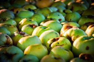 Как сохранить подпорченные фрукты?
