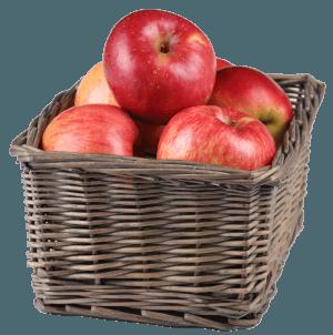 Лежкость сортов яблок