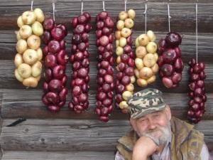 Как хранить лук лучшие способы