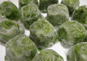 Как сохранить зеленый лук на зиму в холодильнике: советы