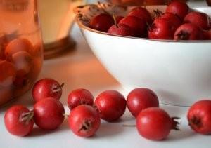 Хранение плодов боярышника