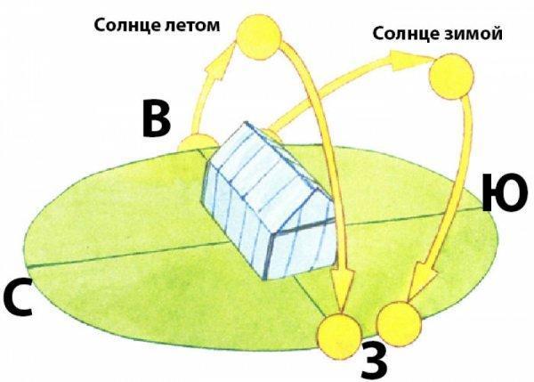Как правильно собрать и установить теплицу из поликарбоната на грунт на участке своими руками