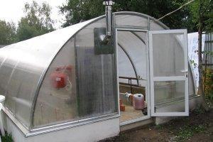 Как выращивать помидоры зимой в теплице как бизнес?
