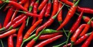 Как посадить перец в горшке из семян