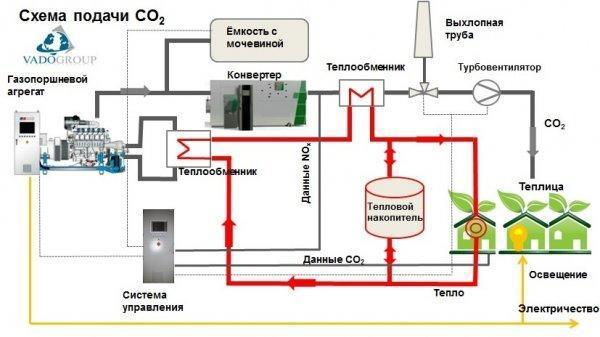 Для чего нужен углекислый газ растениям
