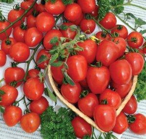 """Сорт помидора черри """"Клубничный"""""""