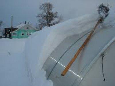 Закрывать ли теплицу из поликарбоната на зиму