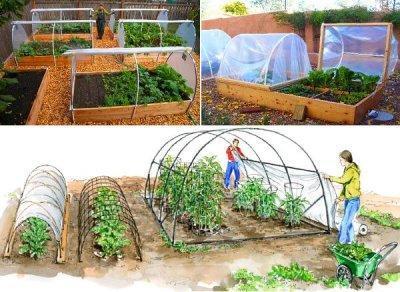 Инструкция: как сделать парник для помидоров своими руками