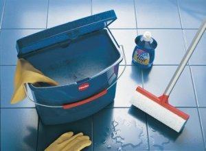 Уборка квартиры после травли и обработки от клопов