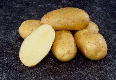 """Картофель """"Рамос"""""""