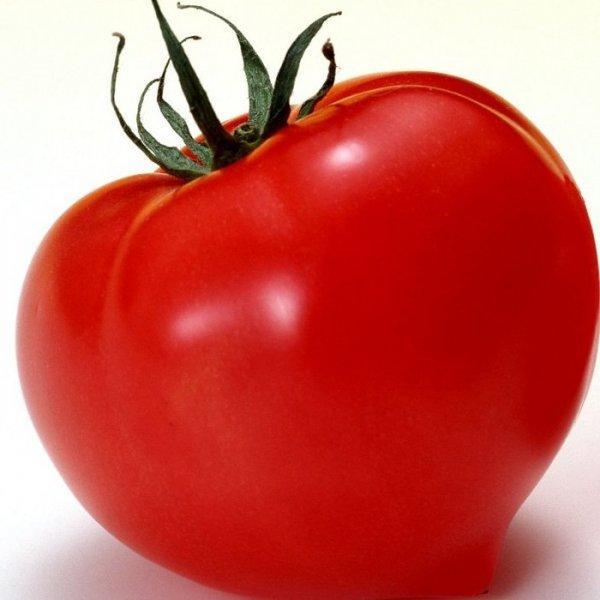Томат - Большая мамочка: описание и характеристики сорта, рекомендации по уходу и выращивания, а так же фото-материалы
