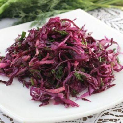 Домашние очень вкусные рецепты блюд из красной капусты с фото вариантов сервировки