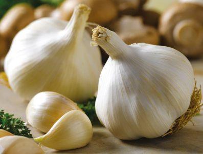 Чеснок при гастрите: можно или нет есть овощ при заболеваниях желудка, имеет ли значение повышенная или пониженная кислотность, как употреблять?