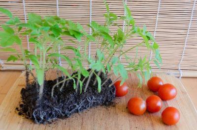 Удобрение органоминеральное Малышок для томатов и перцев 250мл