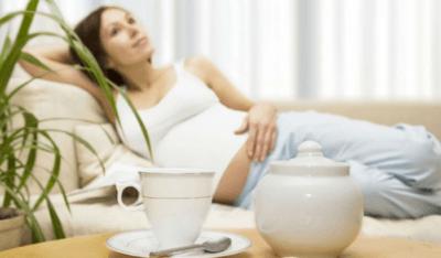 Можно ли мелиссу при беременности и как её правильно употреблять?